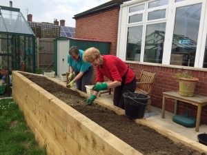 raised bed weeding